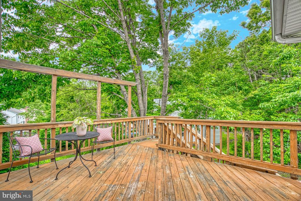 It's like being in a tree house!  Fun! - 6676 STONEBROOK DR, CLIFTON