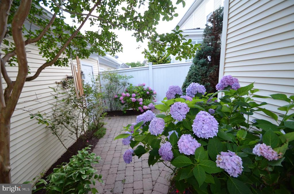 Beautiful garden - 506 LAWSON WAY, ROCKVILLE