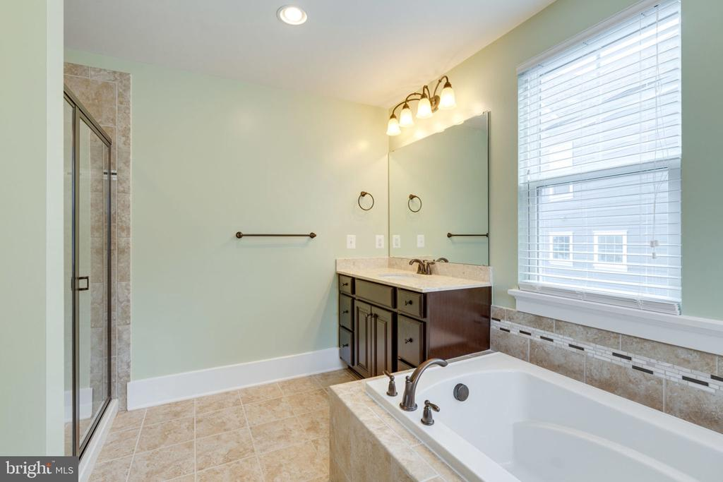 Soaking Tub and Separate Shower - 17016 TAKEAWAY LN, DUMFRIES