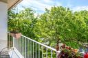 Treetop views from the front deck - 1504 IRVING ST NE, WASHINGTON