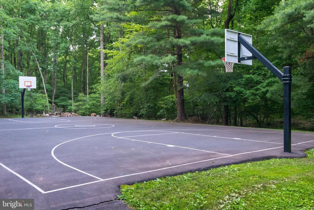 Hoops Anyone?  Neighborhood Basketball Court! - 2877 FRANKLIN OAKS DR, HERNDON