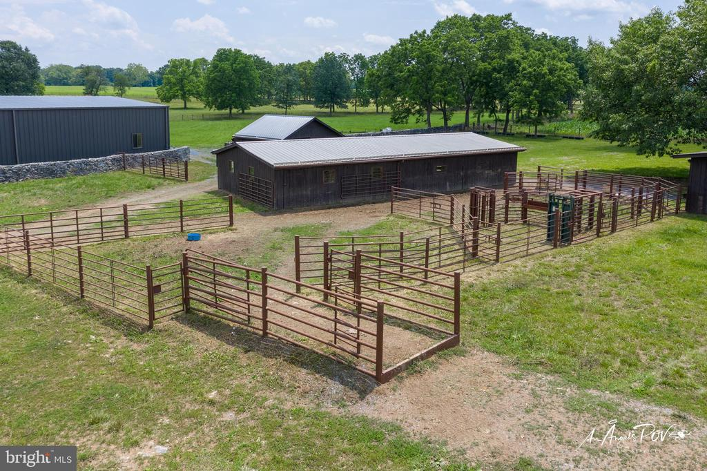 Horse or Cow & Calf Barns and Chutes - 2486 LONGMARSH RD, BERRYVILLE