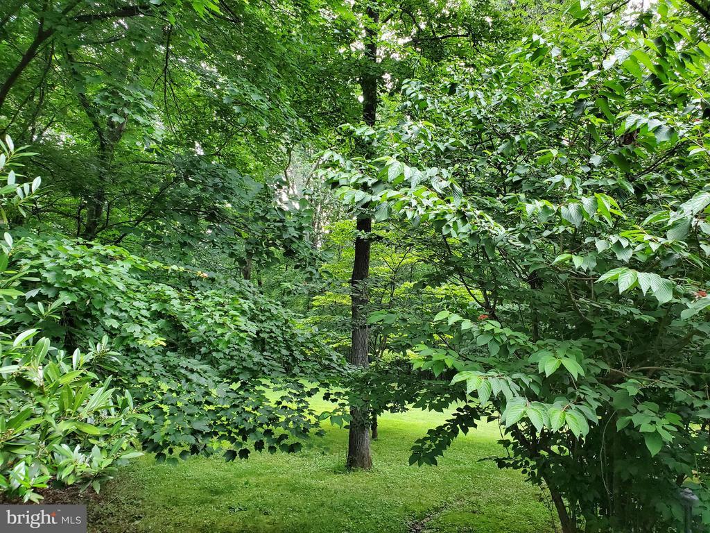 6-acre, sub-dividable property - 10535 VALE RD, OAKTON