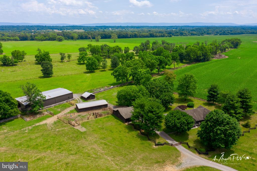 121.12 Fenced Acres with 5 Dwelling Unit Rights! - 2486 LONGMARSH RD, BERRYVILLE