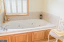 Master Bath Soaking Tub with Separate Shower - 2486 LONGMARSH RD, BERRYVILLE