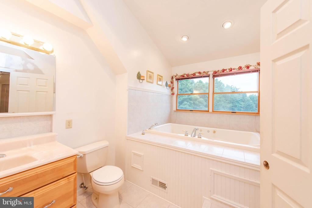 In-Law  Suite Full Bath Soaking Tub - 3326 CARLISLE DR, KNOXVILLE