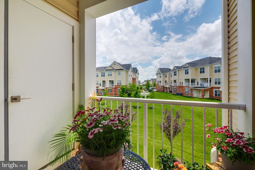 Private Balcony Overlooking Greenspace - 43047 STUARTS GLEN TER #116, ASHBURN