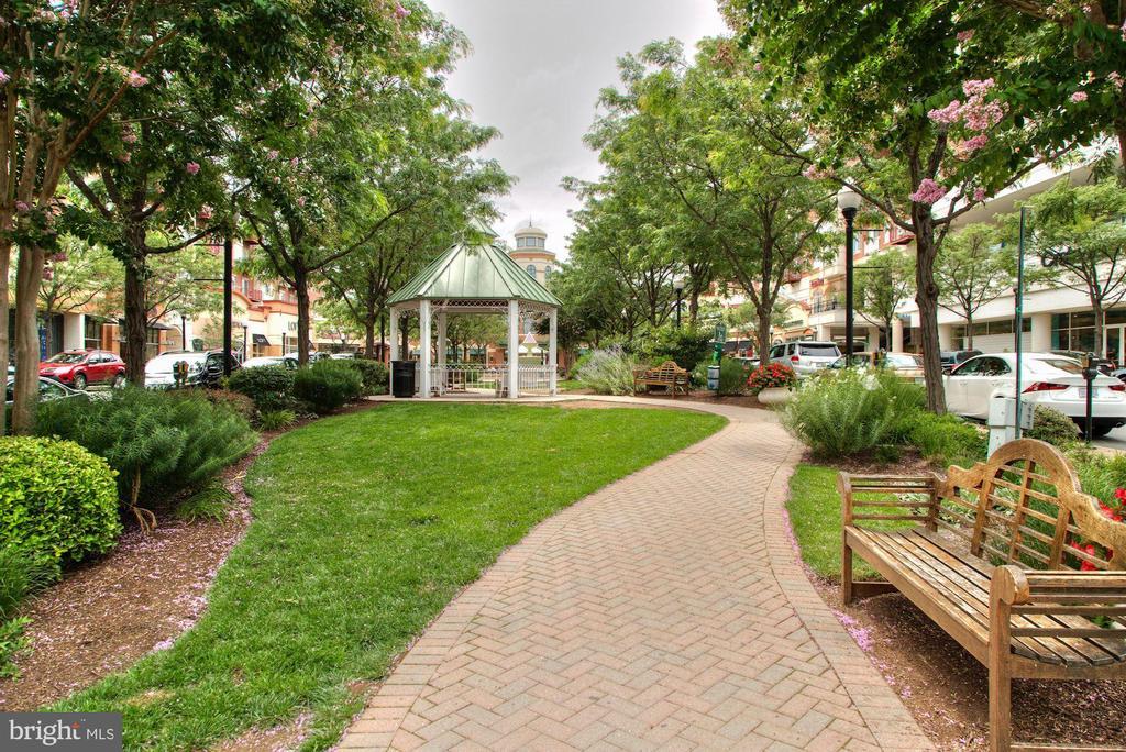 Walk to Market Common Clarendon - 1330 N ADAMS CT, ARLINGTON