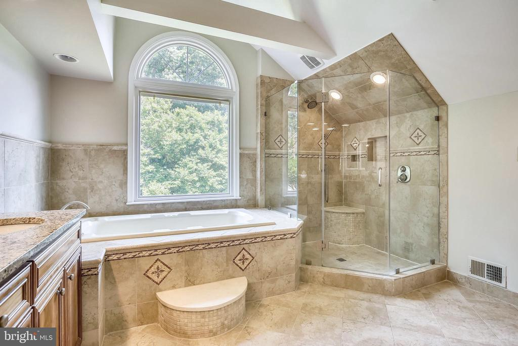 Master with Enormous Shower & Frameless Enclosure. - 2877 FRANKLIN OAKS DR, HERNDON