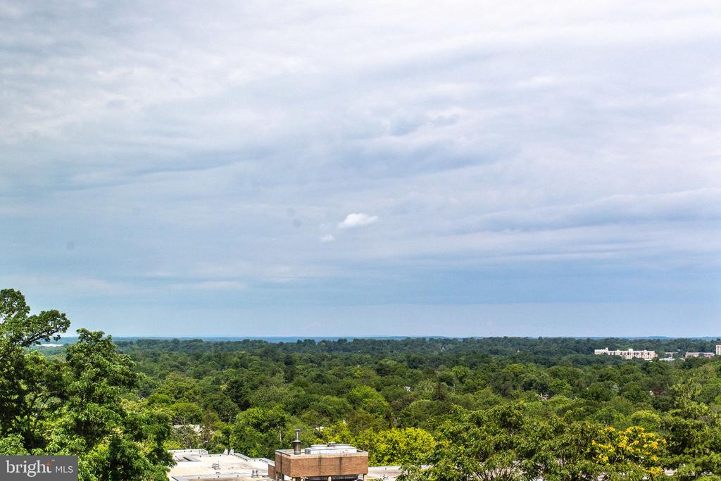 View from the unit - 4101 ALBEMARLE ST NW #618, WASHINGTON