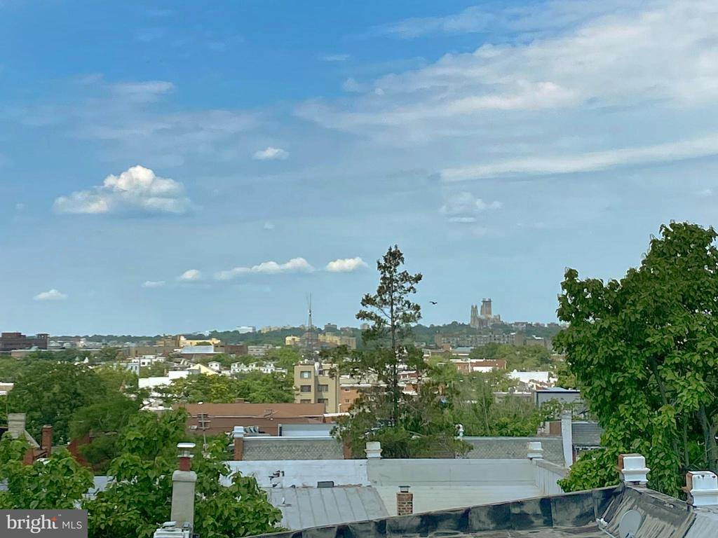 Views of National Cathedral from the roof deck - 432 MANOR PL NW #2, WASHINGTON