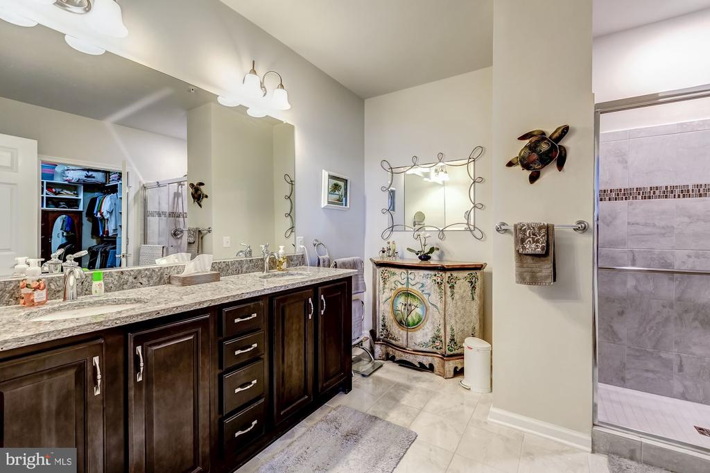 well appointed owner's bath - 20660 HOPE SPRING TER #407, ASHBURN