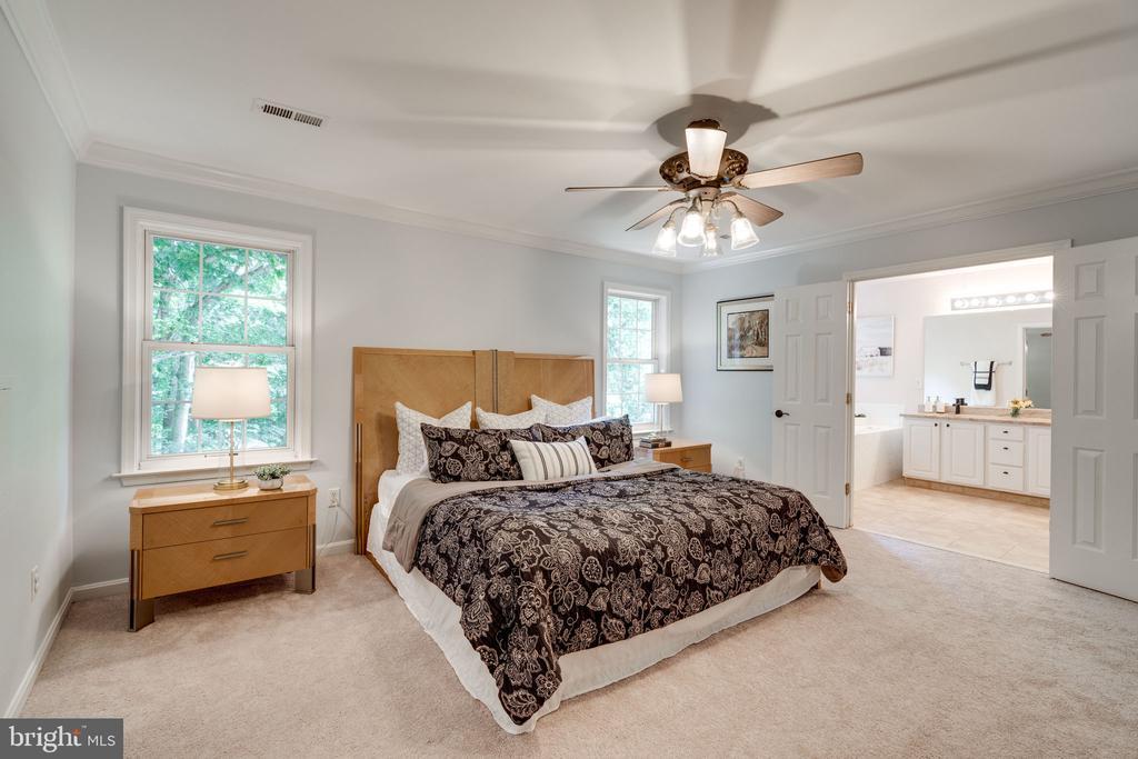 Large Master Bedroom - 29 DERRICK LN, STAFFORD