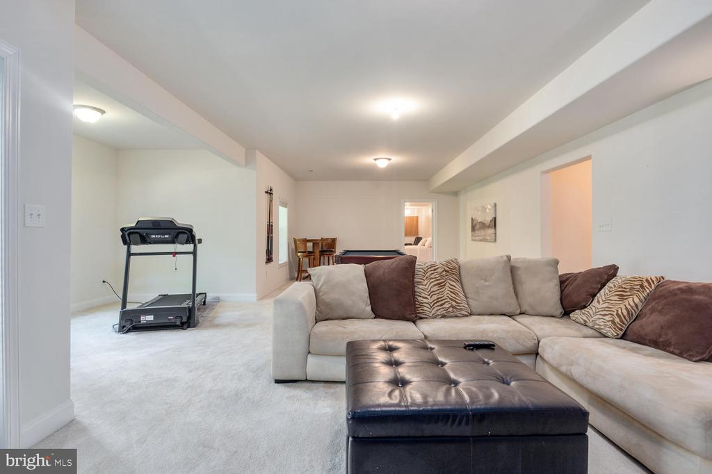 Large Open Basement - 4950 CAMP GEARY LN, STAFFORD