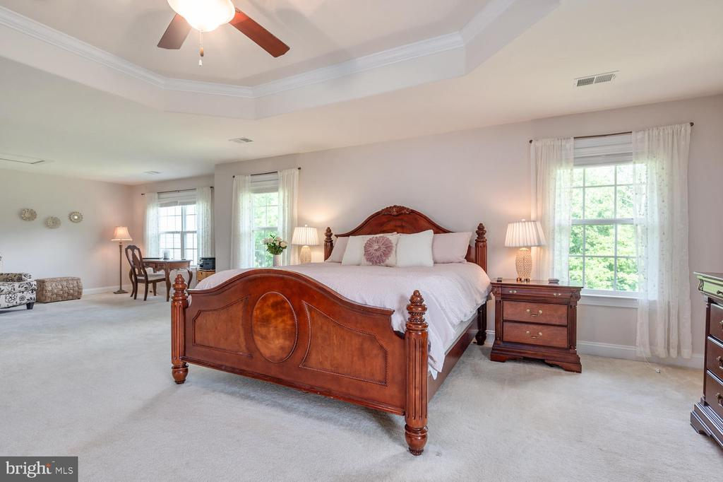 Luxurious Owners Suite - 4950 CAMP GEARY LN, STAFFORD