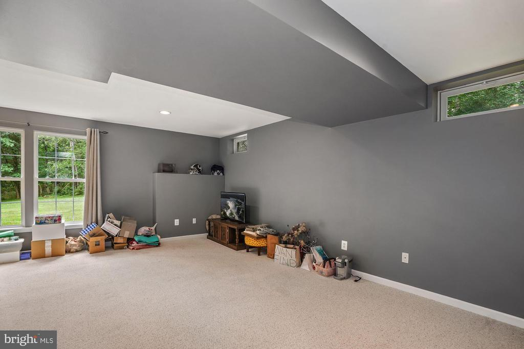 Notice the big windows in this basement! - 20311 BROAD RUN DR, STERLING