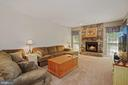 Beautiful stone facing on the fireplace - 20311 BROAD RUN DR, STERLING