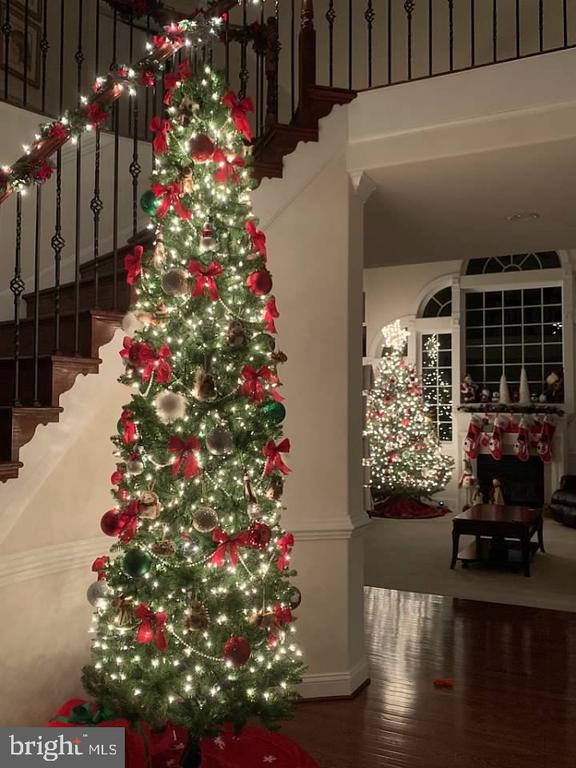 This home is amazing at Christmas time! - 4950 CAMP GEARY LN, STAFFORD