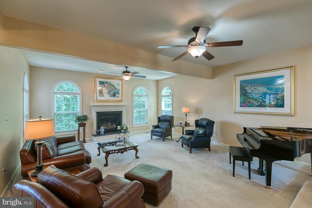 Family Room with 9+ Ceiling Height - 6 MOUNT ARARAT LN, STAFFORD