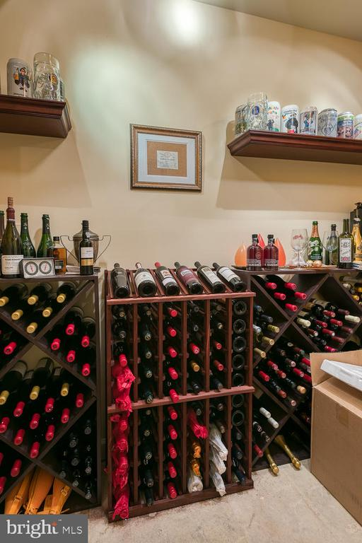 Climate Controlled Wine Cellar - 6 MOUNT ARARAT LN, STAFFORD