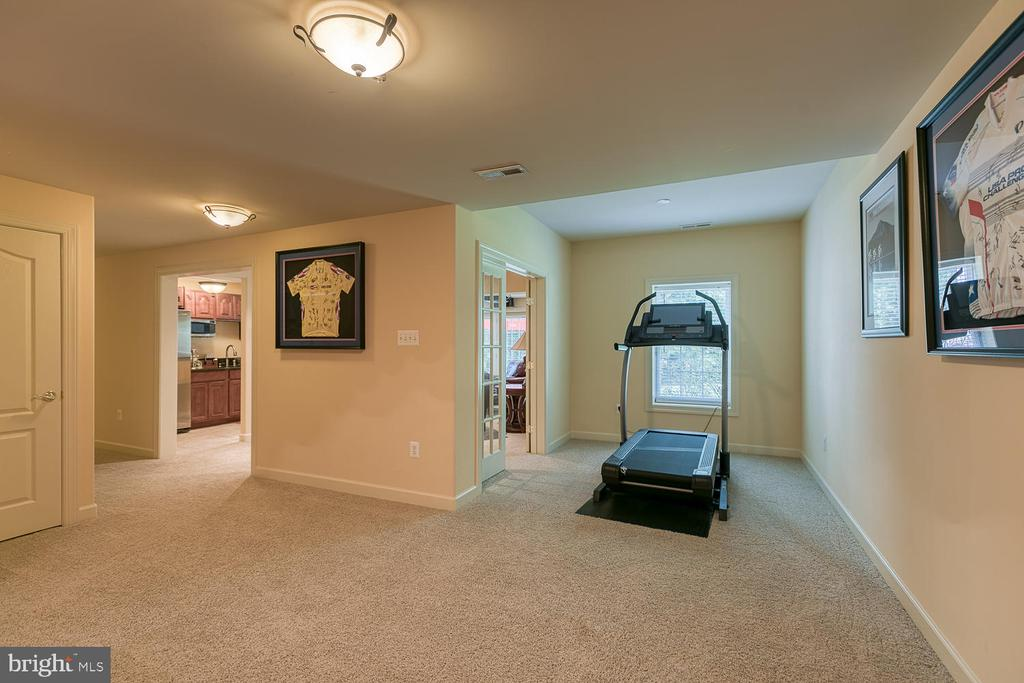 Rec Room/ Exercise Area - 6 MOUNT ARARAT LN, STAFFORD
