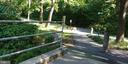 Nature is good for the soul - 200 N PICKETT ST #907, ALEXANDRIA