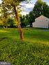 Idyllic lot in established neighborhood - 10674 OLD BOND MILL RD, LAUREL