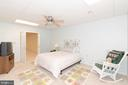 LARGE BEDROOM IN THE BASEMENT. - 390 NANSFIELD DR, HARPERS FERRY