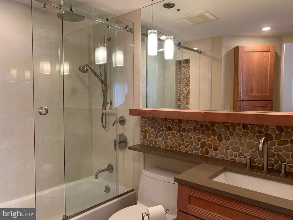Renovated Master Bathroom - 24 COURTHOUSE SQ #810, ROCKVILLE