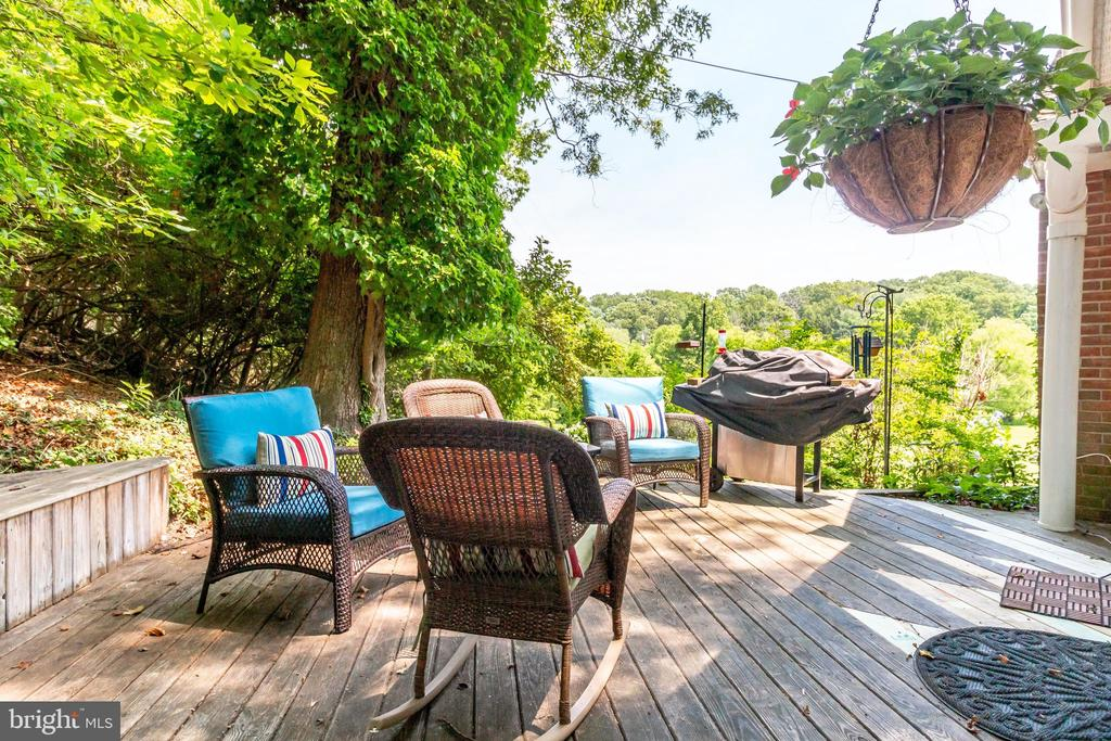 deck with views - 2718 FOX MILL RD, OAK HILL