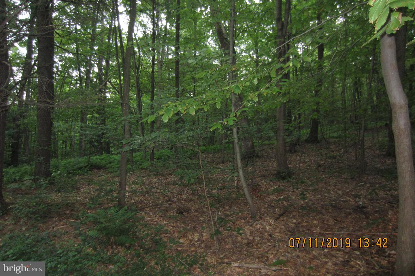 Land for Sale at Marysville, Pennsylvania 17053 United States