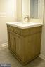 Vanity in hall bath - 111 APPLEVIEW CT, LOCUST GROVE