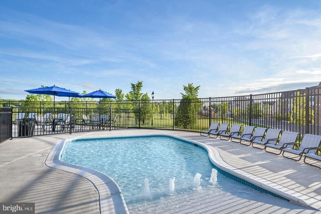 Community Swimming Pool - 42630 HARLOW MEADOWS TER, DULLES