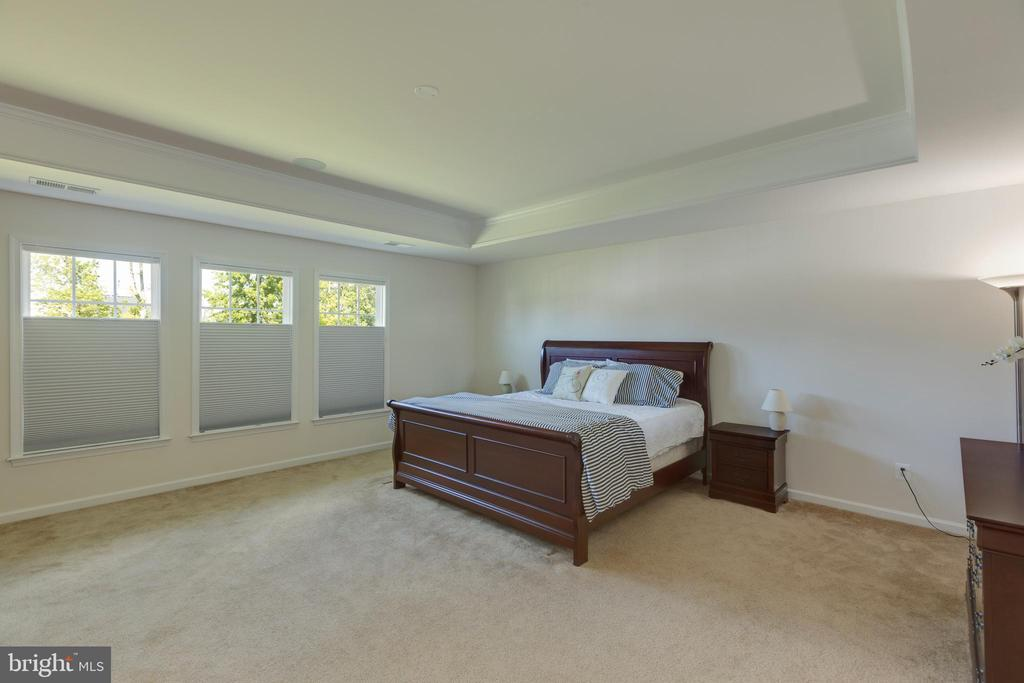 Master bedroom - 40594 SCULPIN CT, ALDIE