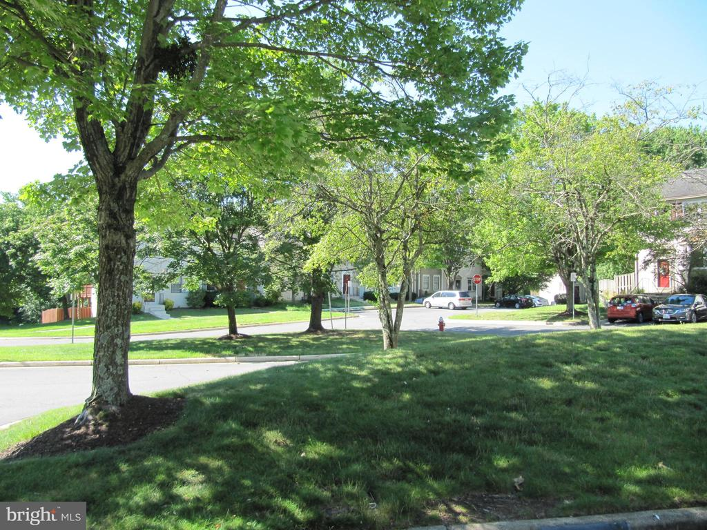 View of area in front of the towhhomes - 13616 WILDFLOWER LN, CLIFTON