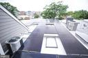 New Solar Panels - fully paid for. - 825 8TH ST NE, WASHINGTON