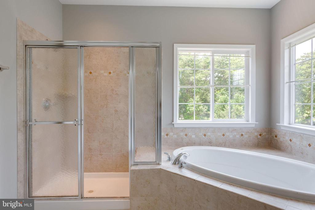SOAKING TUB AND STAND  UP SHOWER - 42345 ASTORS BEACHWOOD CT, CHANTILLY