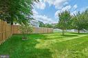 Rear Yard - 13715 SHELBURNE ST, CENTREVILLE