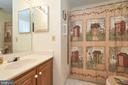 Upper Level Hall Bathroom - 13715 SHELBURNE ST, CENTREVILLE