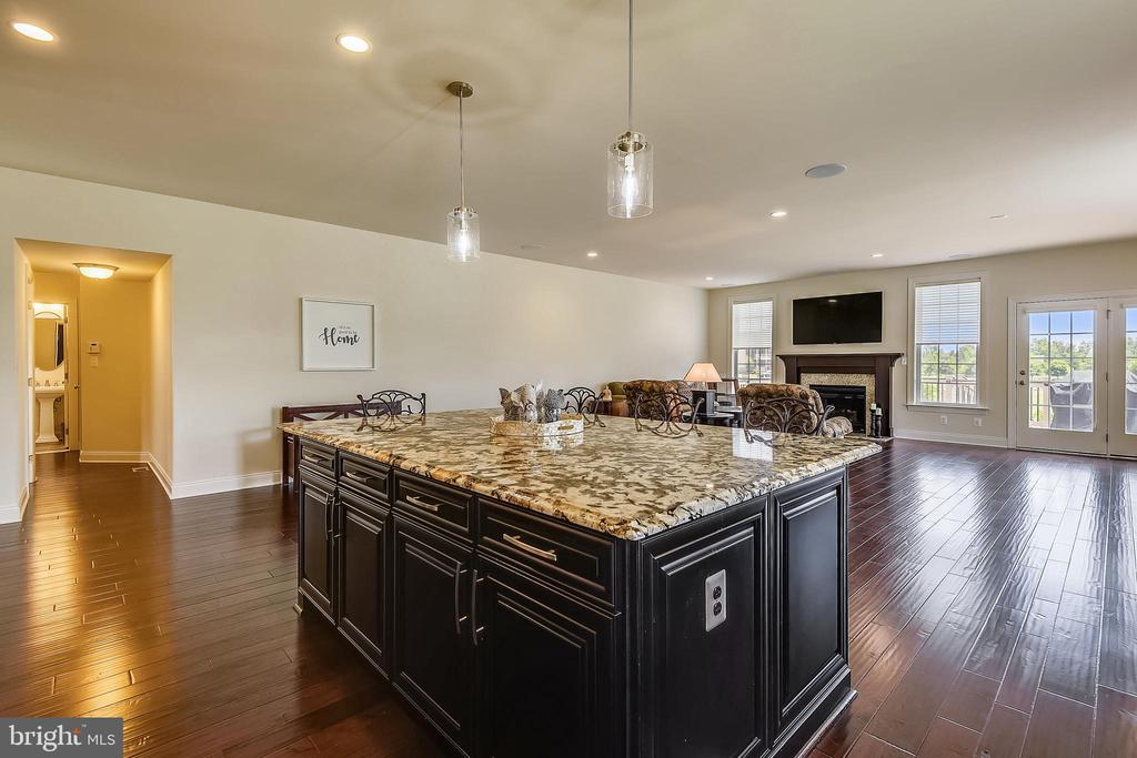 Upgraded Granite, exquisite and spacious - 22602 PINKHORN WAY, ASHBURN