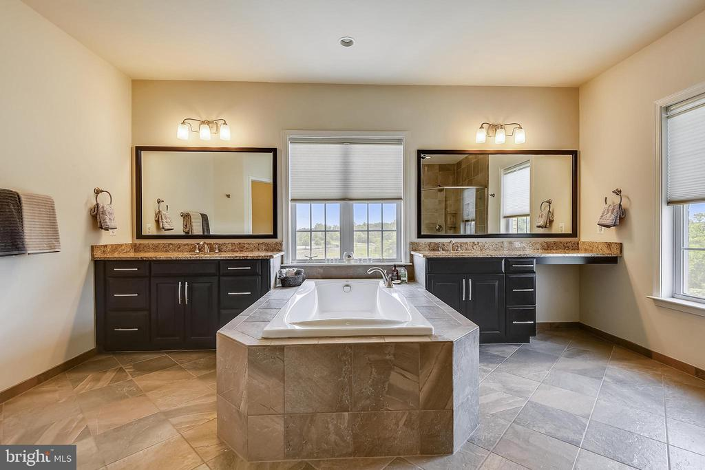 WOW - additional upgrades here - 22602 PINKHORN WAY, ASHBURN