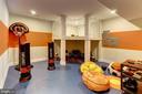 Recreation Room - 789 WHITE ELM, ALDIE