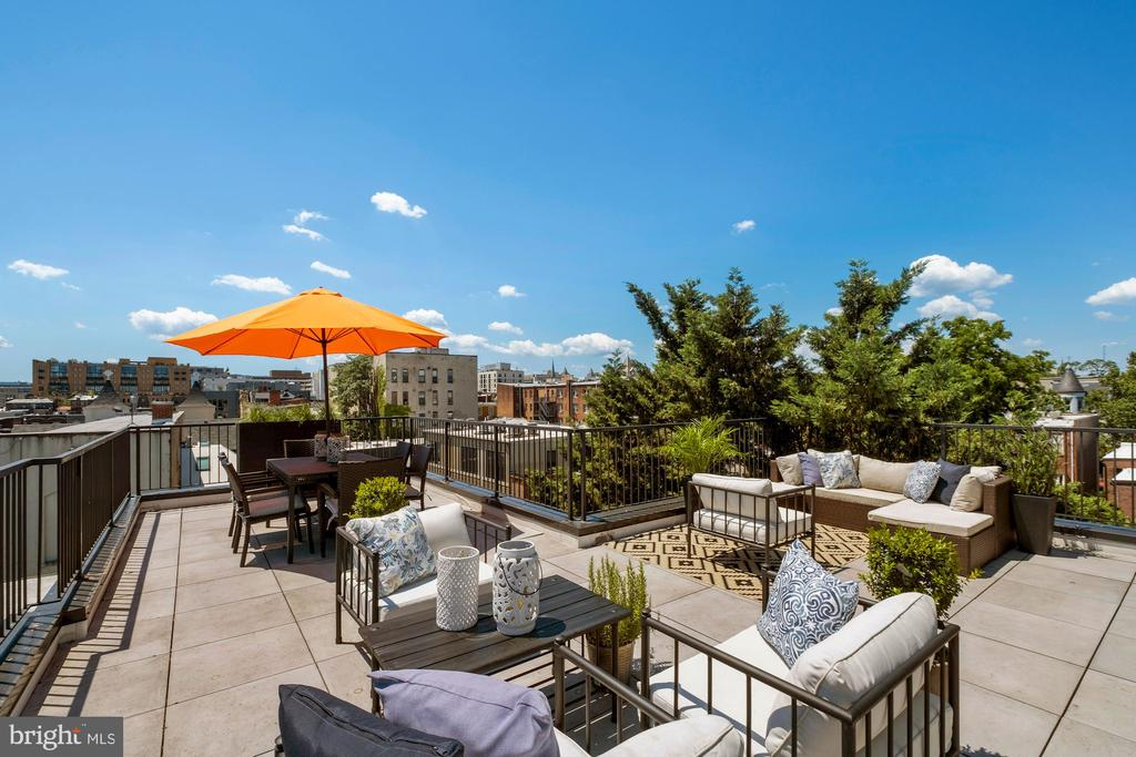 Spectacular Roof Terrace perfect - 928 O ST NW #3, WASHINGTON