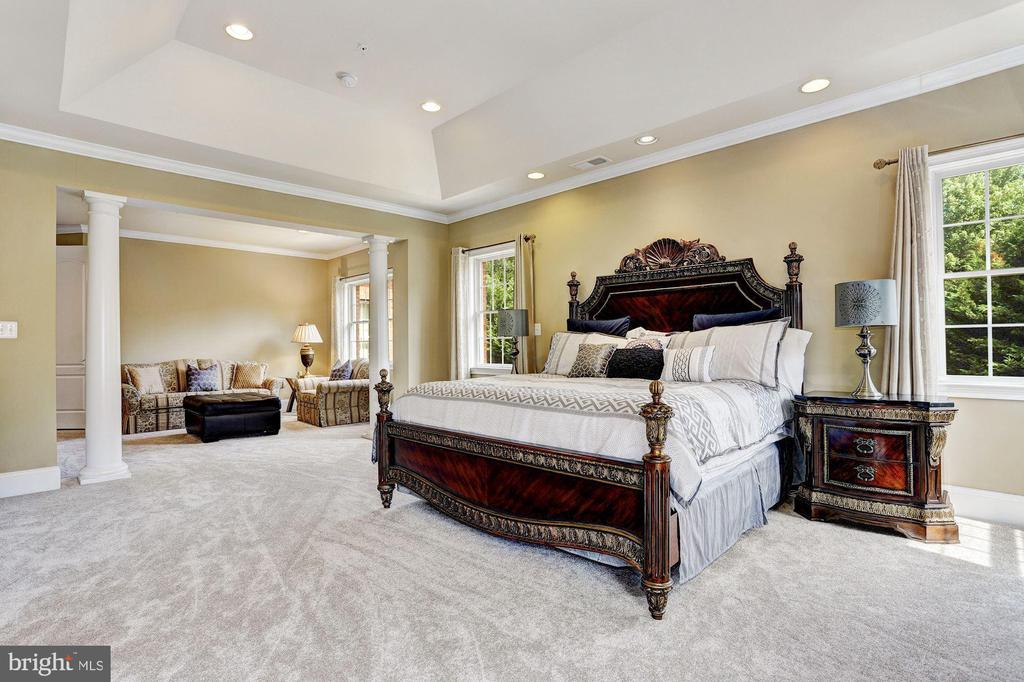 Master Suite w| Sitting Room - 11227 INDEPENDENCE WAY, ELLICOTT CITY