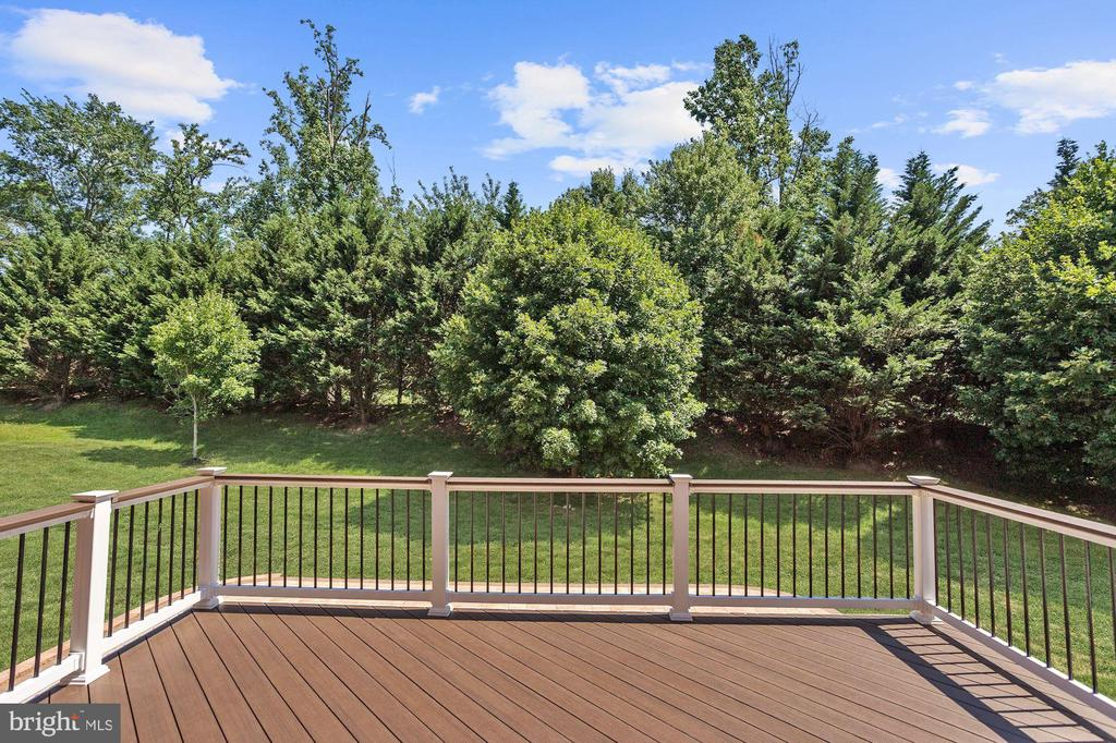 Tree Lined View - 11227 INDEPENDENCE WAY, ELLICOTT CITY