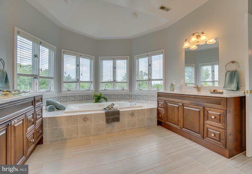 Opulent owner's bath with jetted tub & sep shower - 320 IRONSIDE CV, STAFFORD