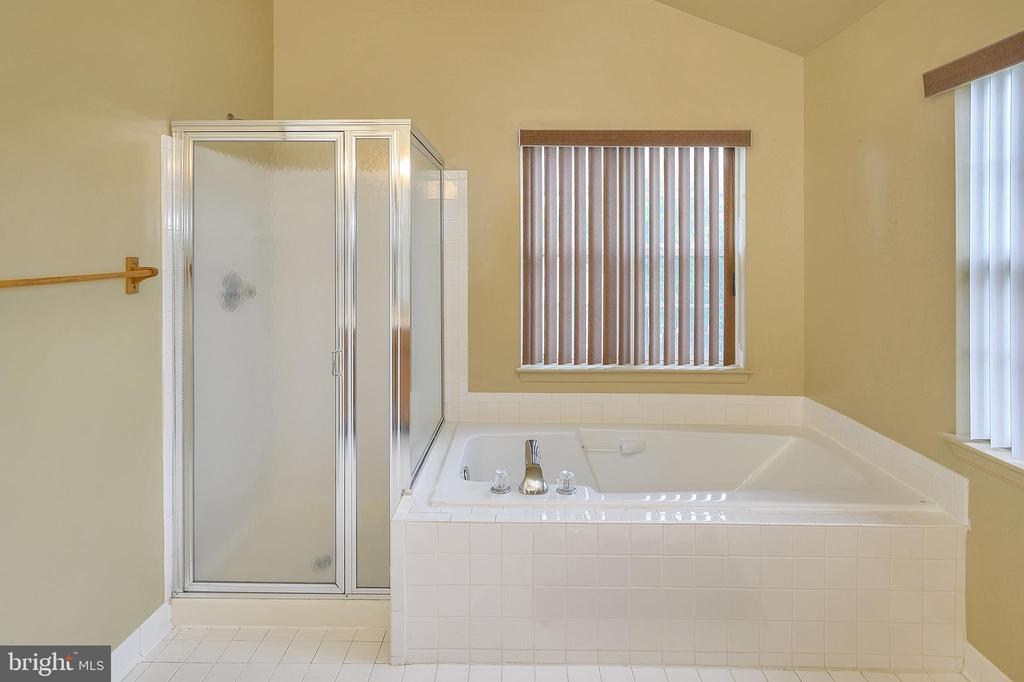 Master bath/soaking tub - 6 BRANTFORD DR, STAFFORD