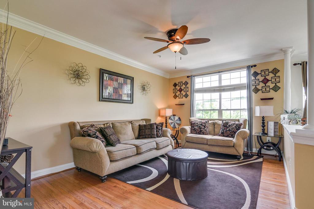 Living Room - 4843 TOTHILL DR, OLNEY