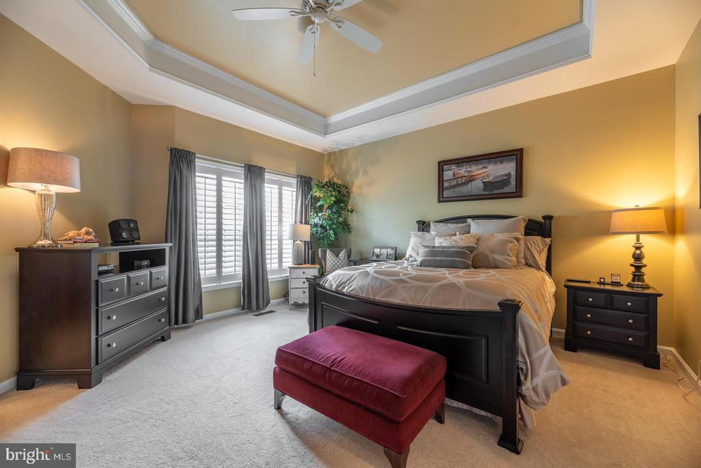 Large master bedroom with tray ceiling and fan. - 19441 COPPERMINE SQ, LEESBURG