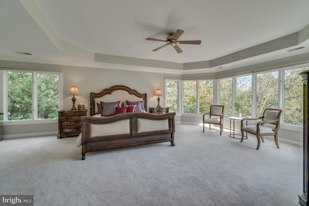 Luxurious master suite with fireplace - 43559 FIRESTONE PL, LEESBURG